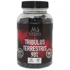 Tribulus Magnus
